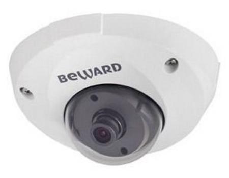 B1710DM IP-камера купольная